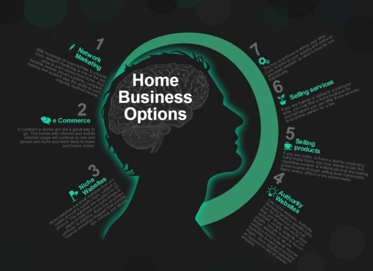 Home Business Options Infographic