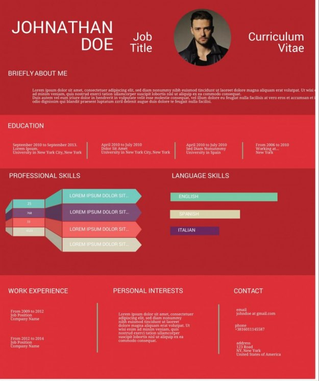 infographic resume example