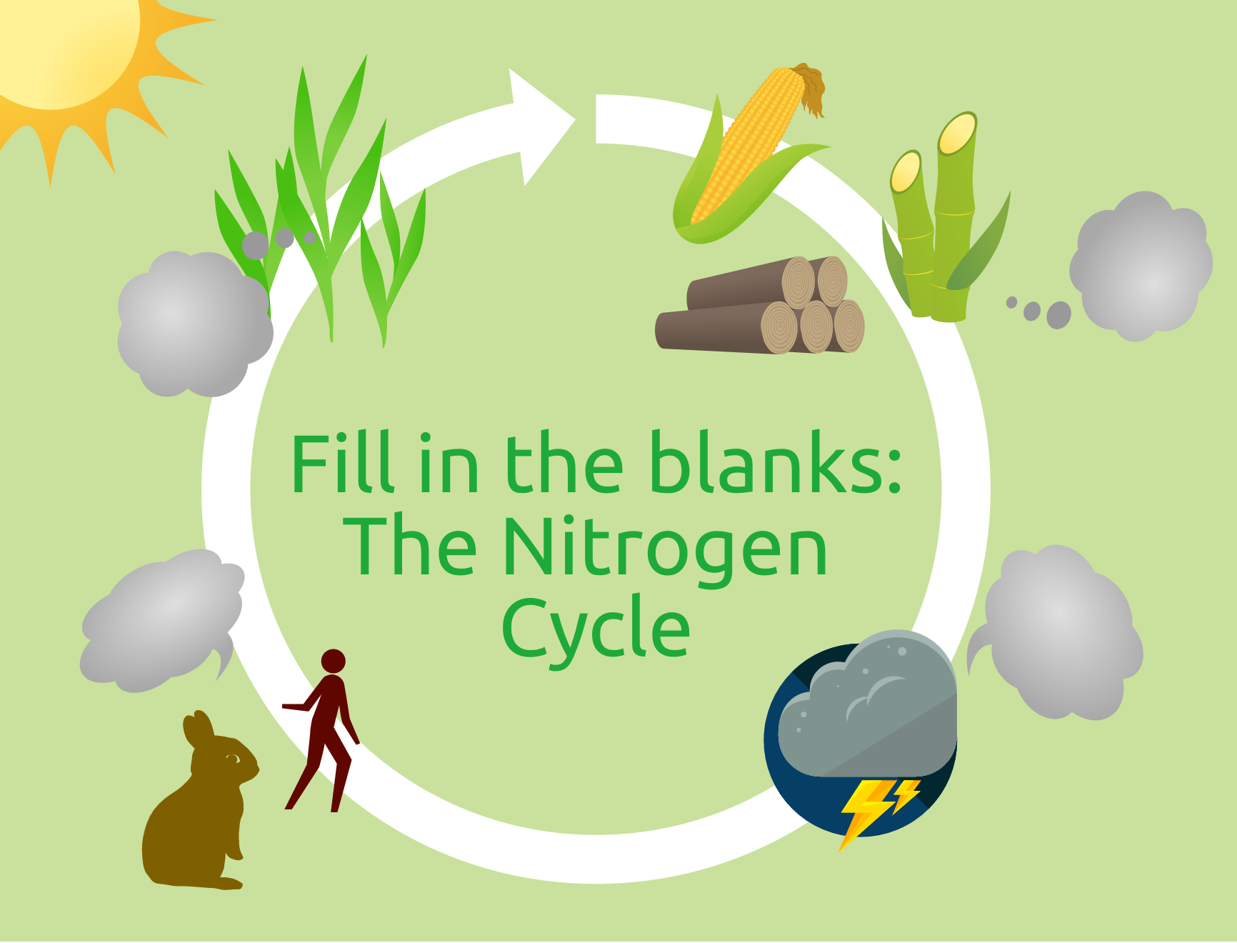 nitrogen cycle infographic easelly