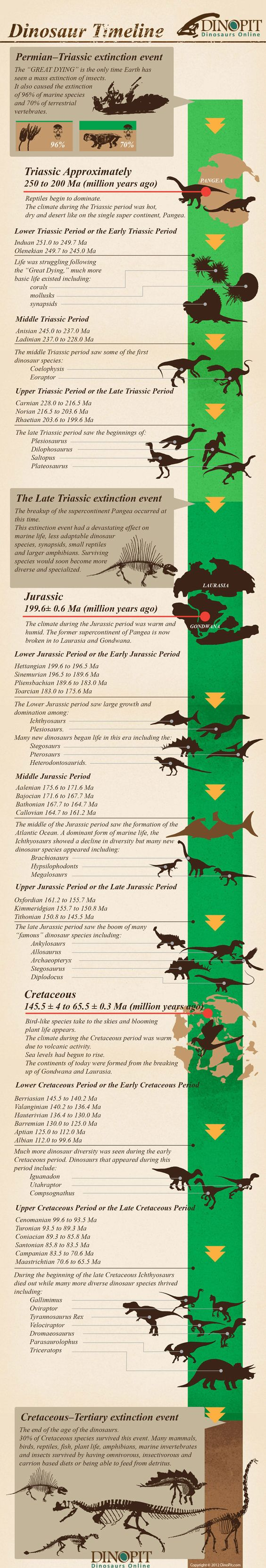 dinosaur infographic