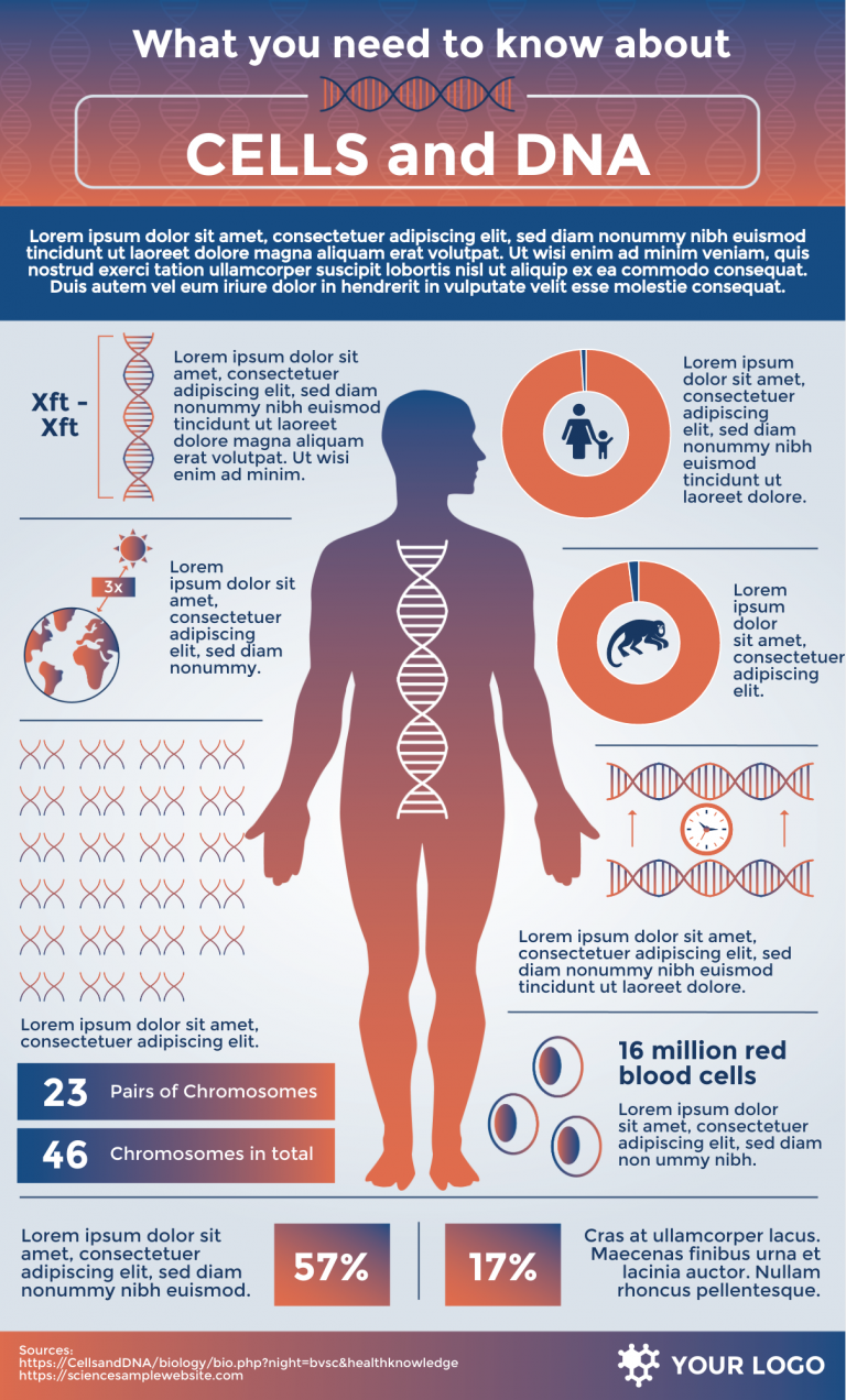 DNA infographic template