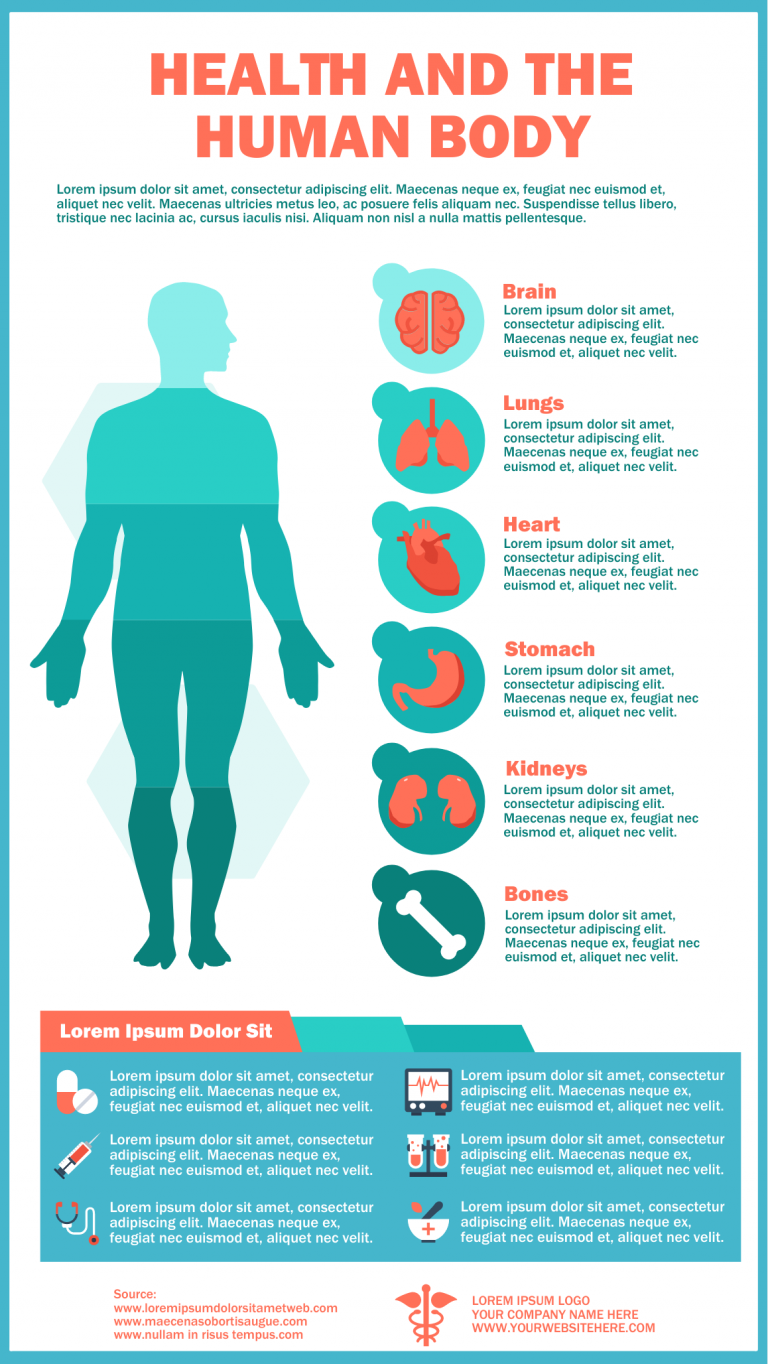 Health and the Human Body Infographic Template
