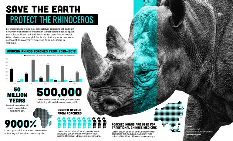 Rhinoceros Infographic Template