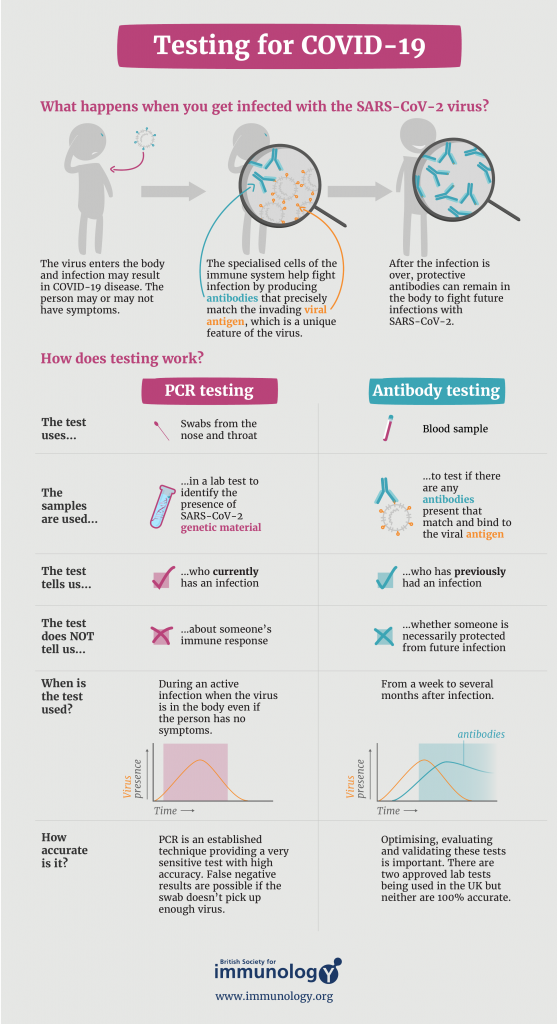 an infographic about covid-19 testing