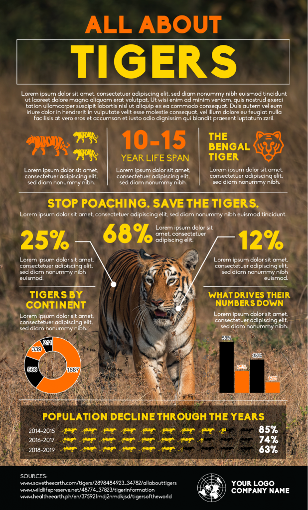 an infographic template about tigers