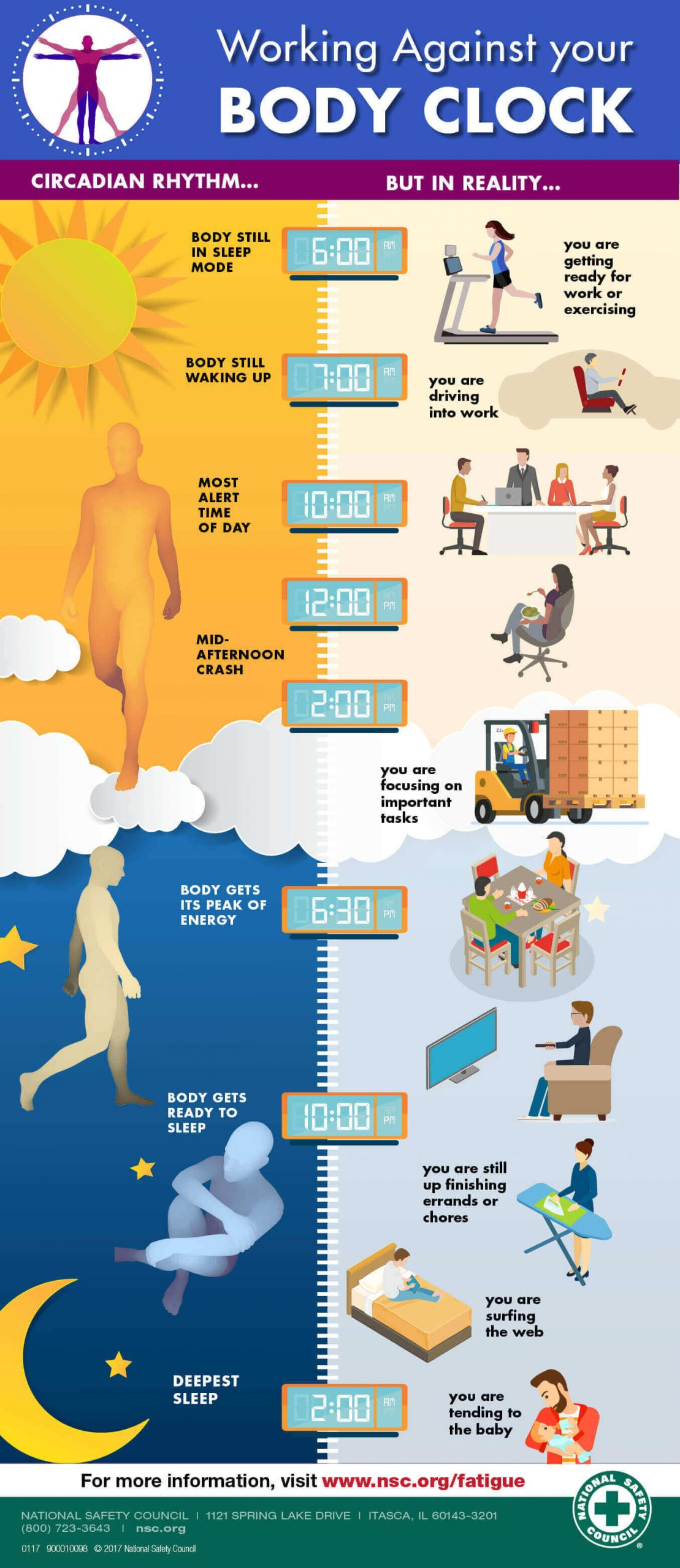 an infographic about working against your body clock