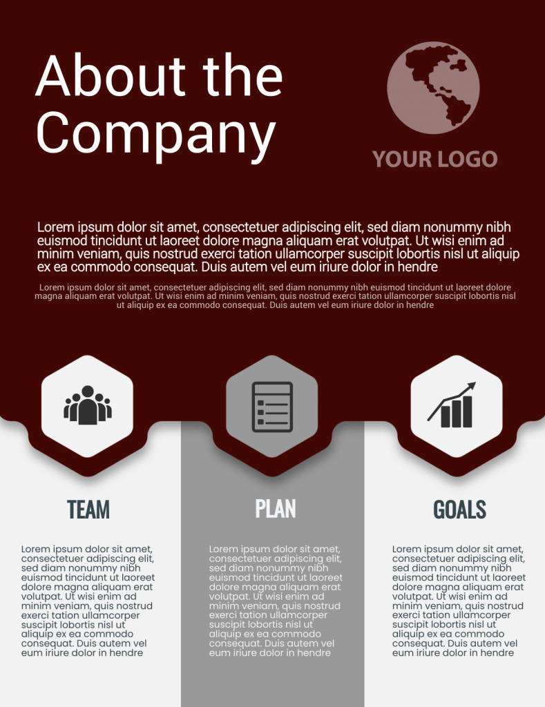 company infographic template