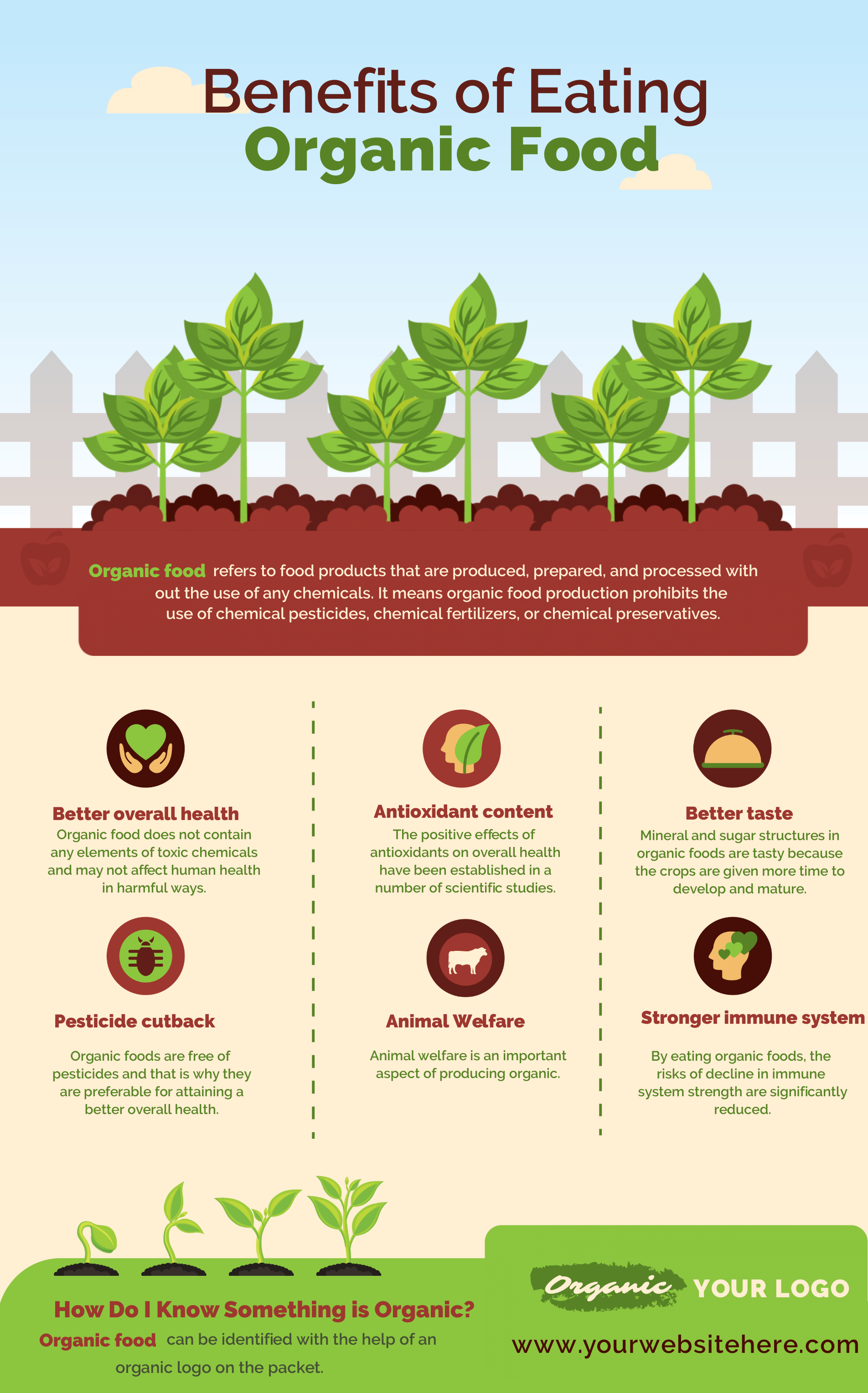 Organic food infographic with big headings and subheading