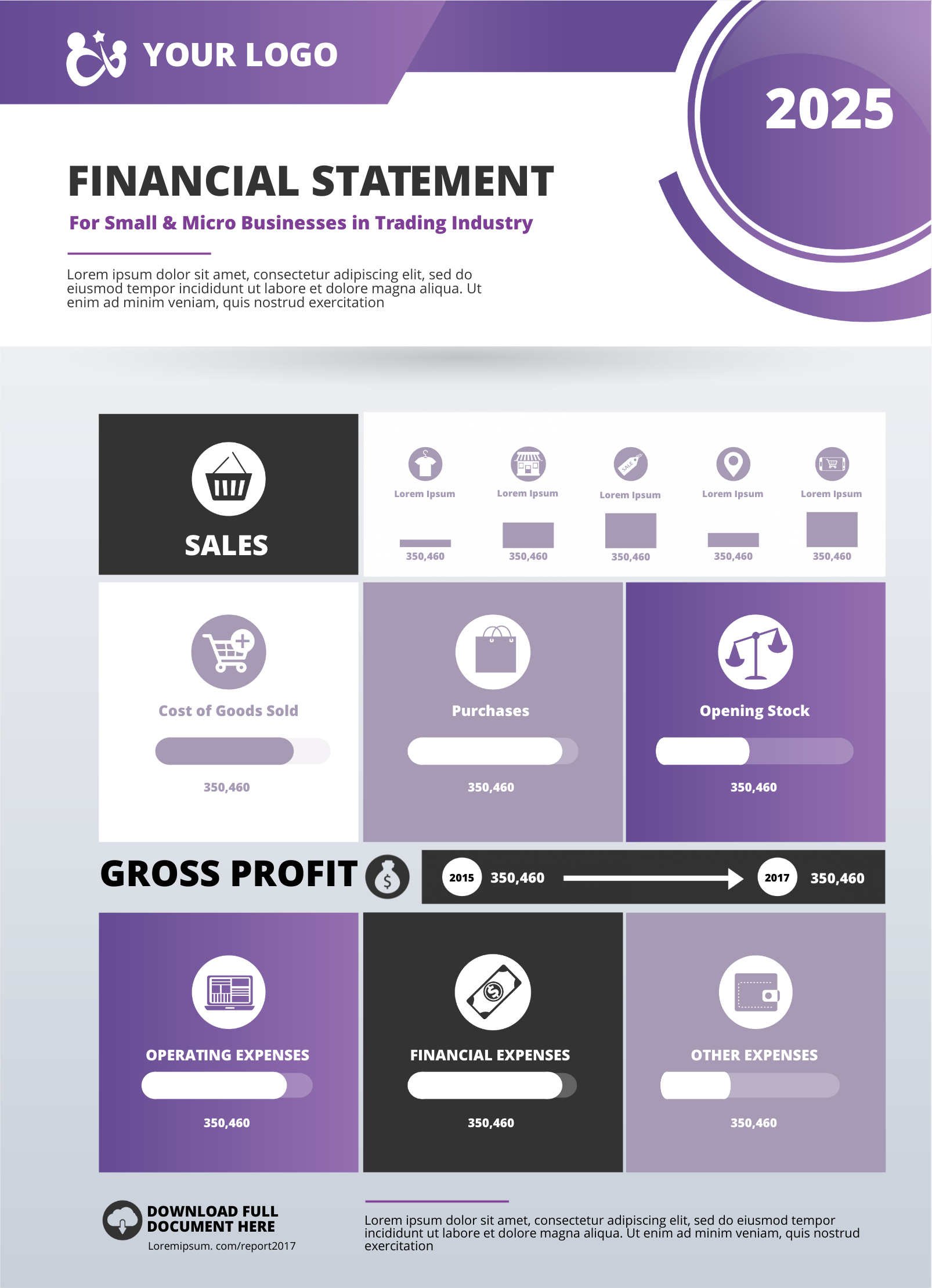 Financial statement infographic