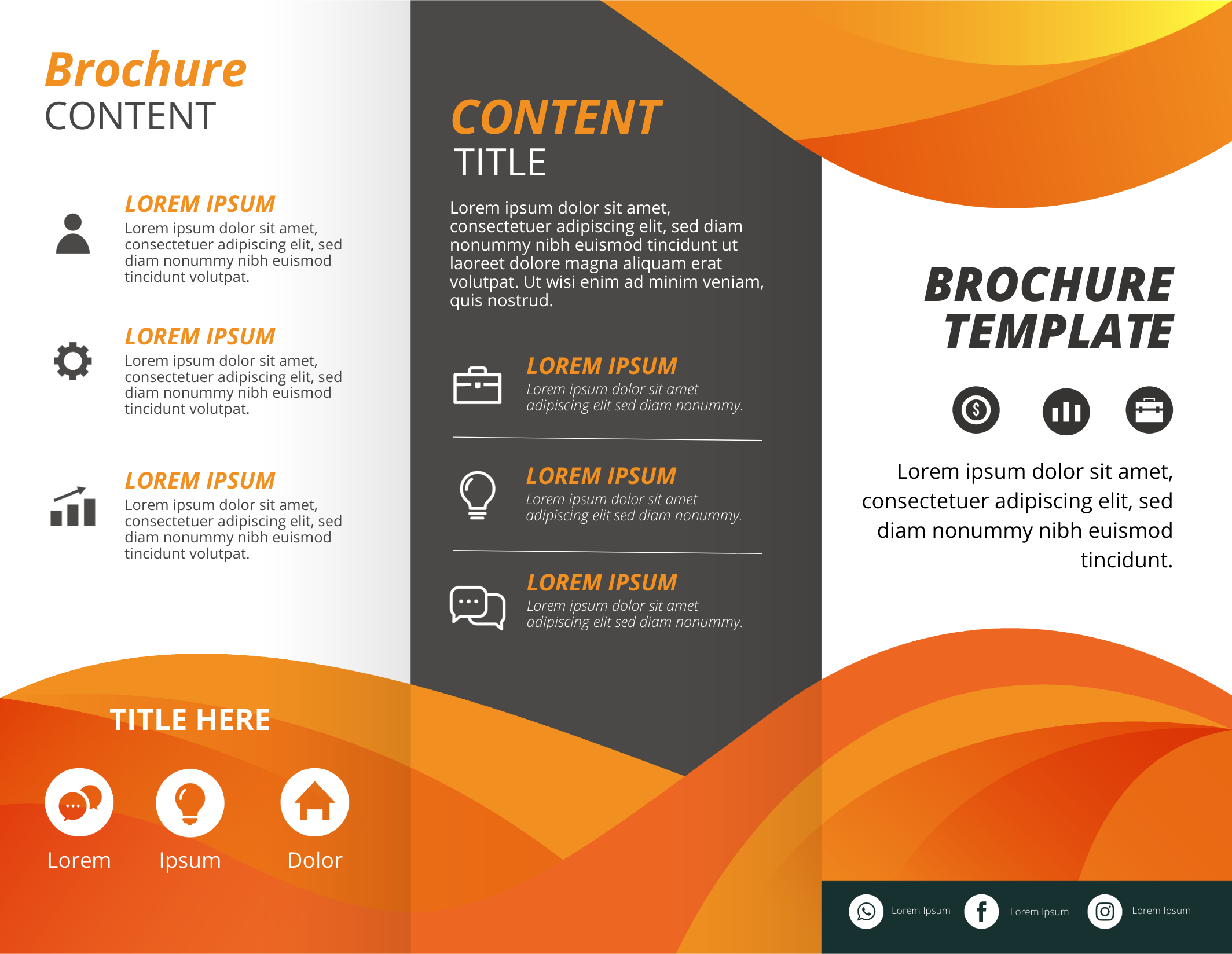 Brochure infographic template