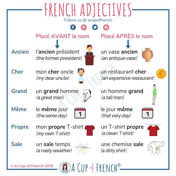 An infographic about french adjectives