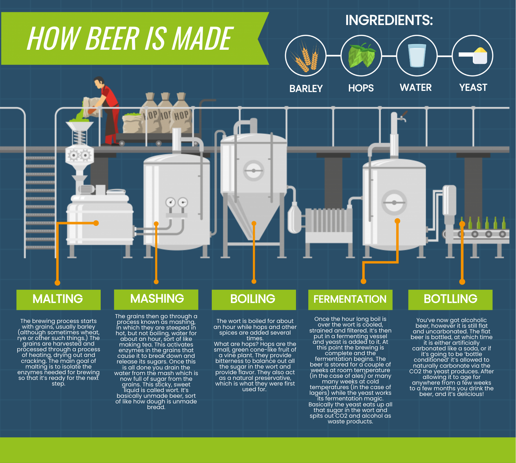 an infographic about the beer making process.