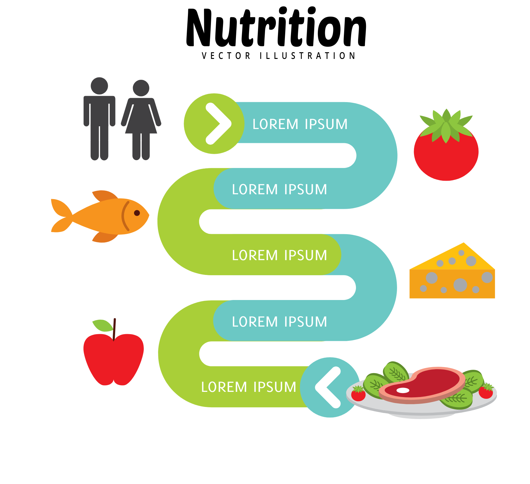 an infographic nutrition.